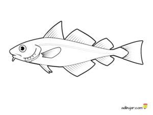 Dibujo de un pez para colorear. Animales acuáticos