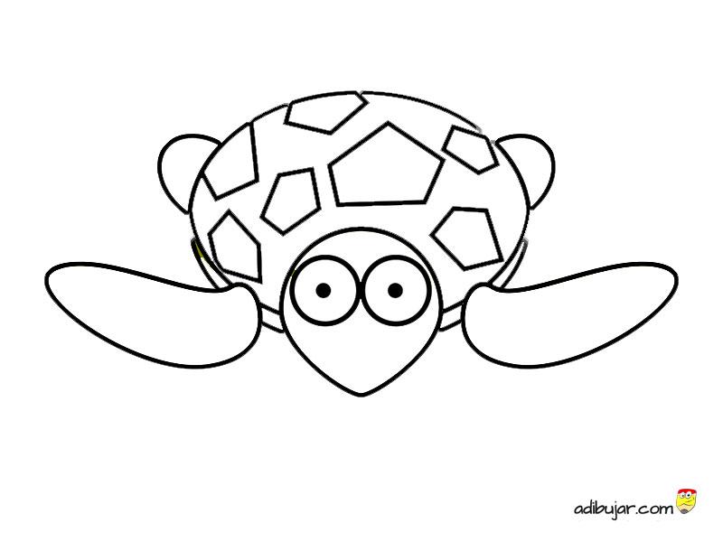 Dibujos De Animales Acuaticos Para Colorear E Imprimir: Imágenes Para Colorear Tortuga