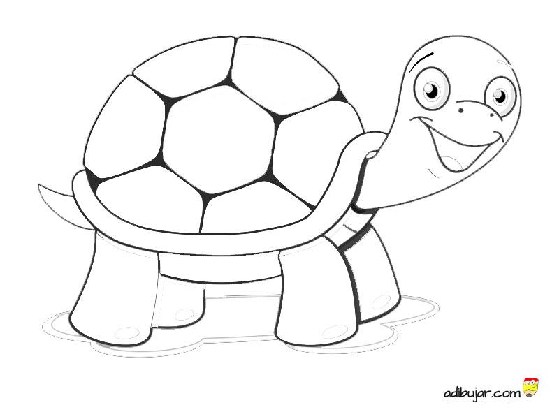 Dibujos Para Colorear De Tortugas Adibujarcom