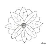 Flor de pascua: Adornos y decoración navideña